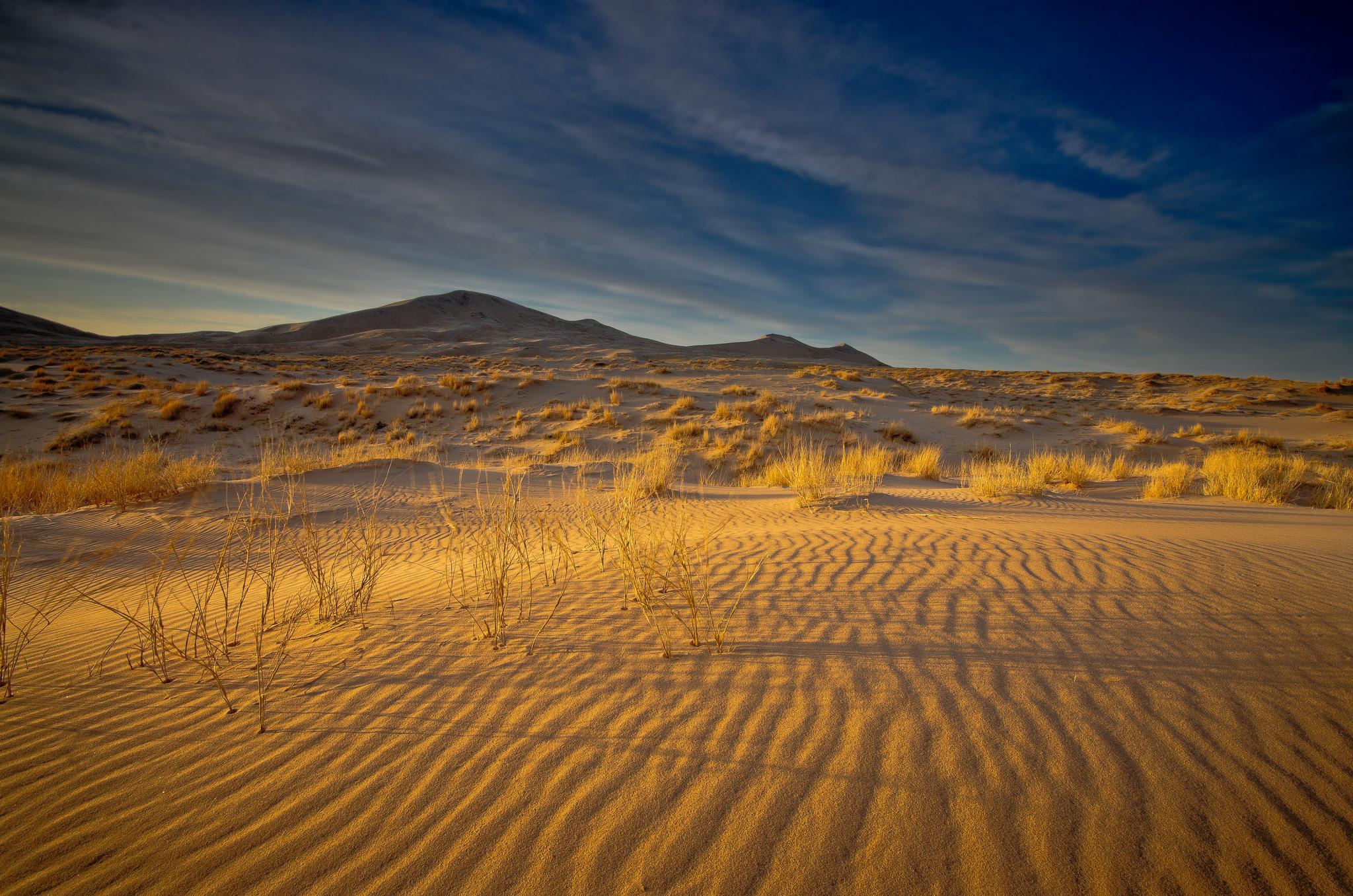Фотографии природа пустыня холмы