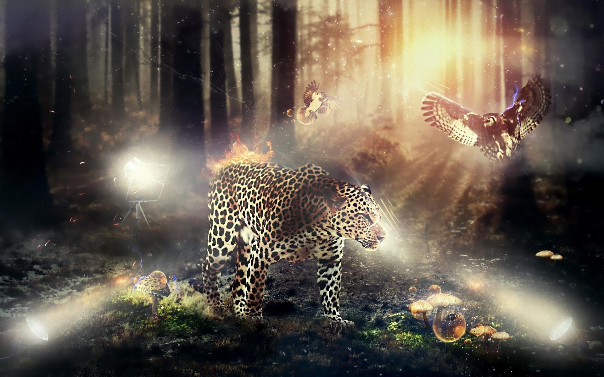 Картинки природа скачать на рабочий ...: xorst.ru/oboi?view=detail&id=39503