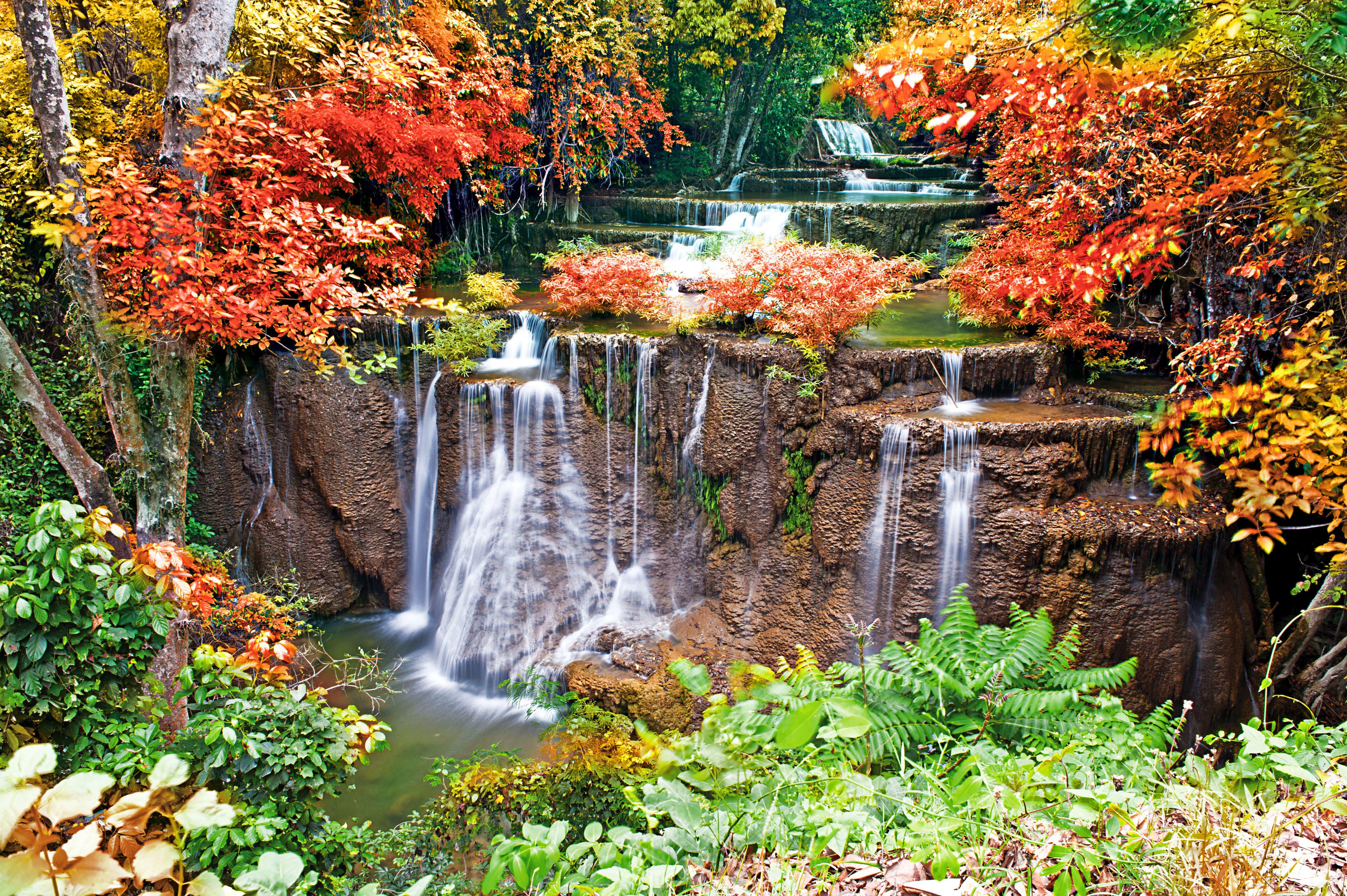 Картинки водопад в лесу скачать для