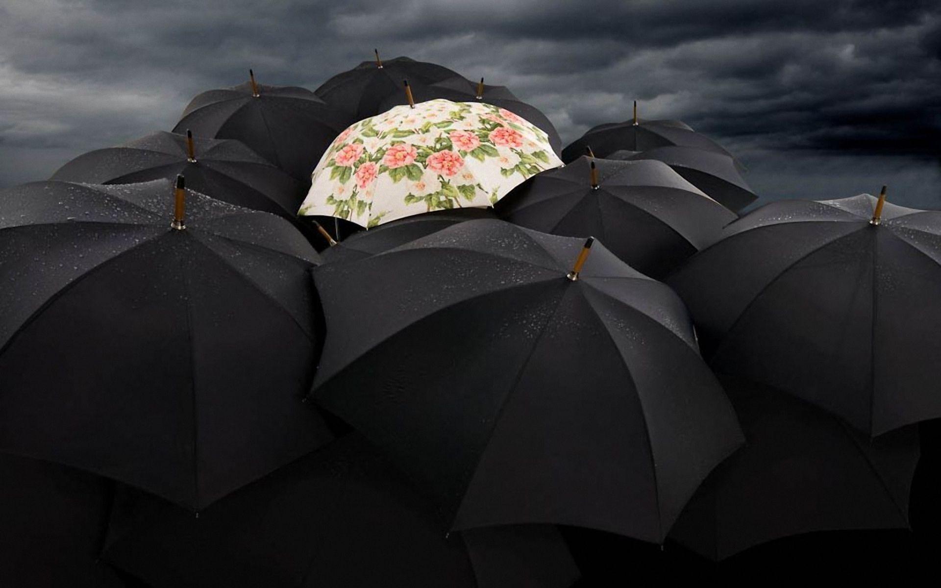 Обои зонты скачать на рабочий стол, фото черные