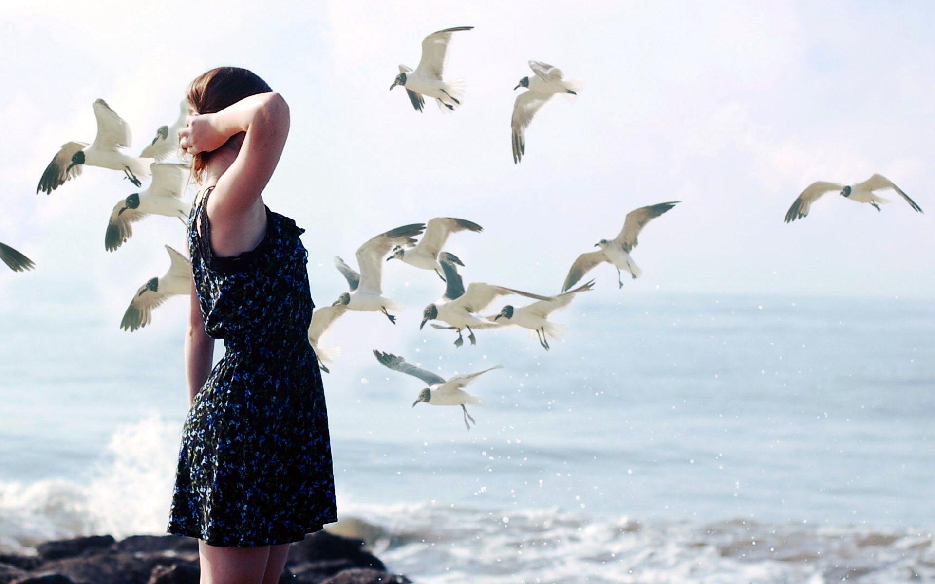 Скачать заставки птицы ситуация