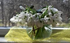 Обои букет скачать для рабочего стола, фотографии весна