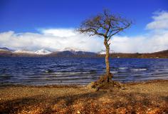 Картинки Шотландия скачать для рабочего стола, заставки озеро