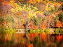 Картинки природа скачать на рабочий стол, заставки осень