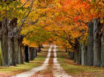 Картинки природа скачать на рабочий стол, фотографии осень