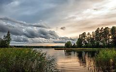 Обои рябь на озере, скачать заставки камыш