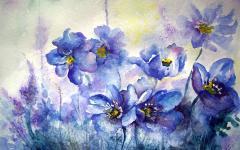 Картинки цветы скачать на рабочий стол, рисунки картина